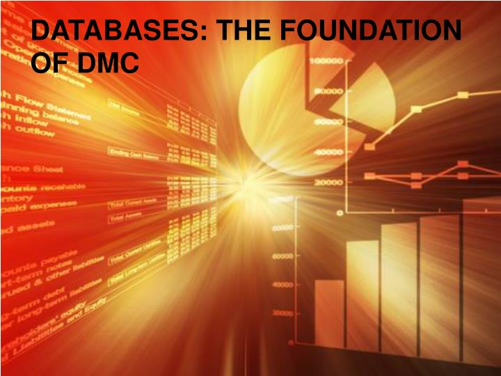 DATABASES: THE FOUNDATION OF DMC
