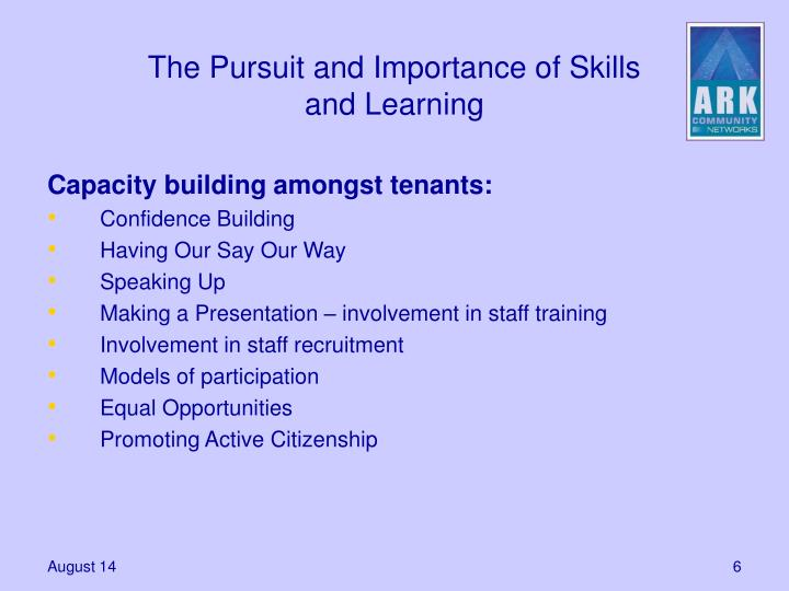 The Pursuit and Importance of Skills