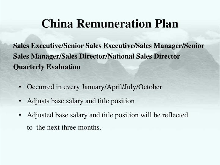 China Remuneration Plan