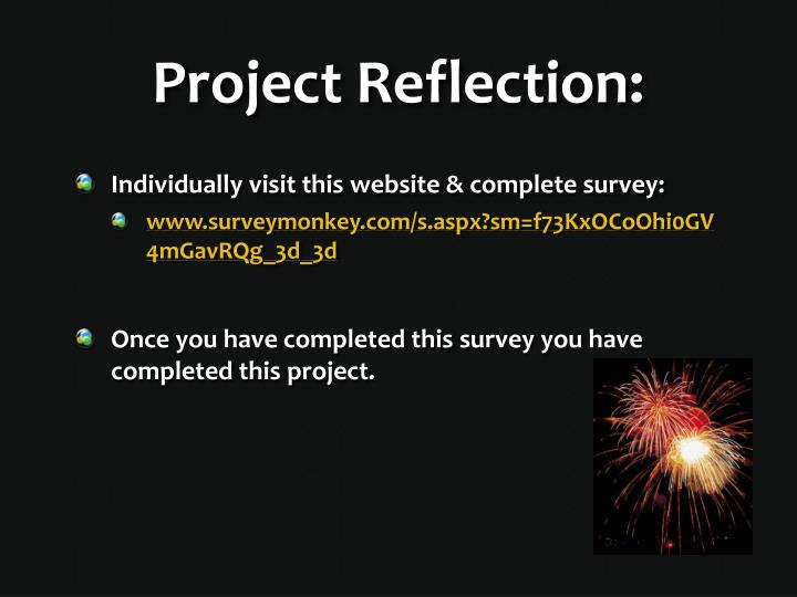 Project Reflection: