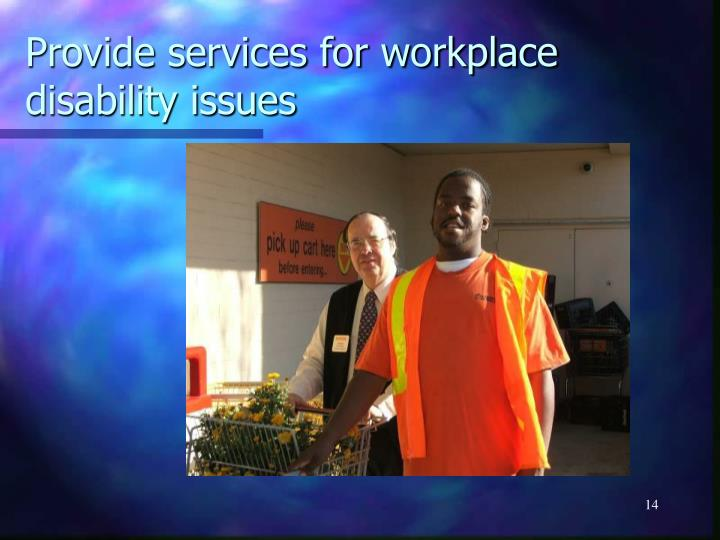 Provide services for workplace disability issues