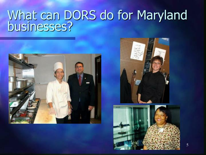 What can DORS do for Maryland businesses?