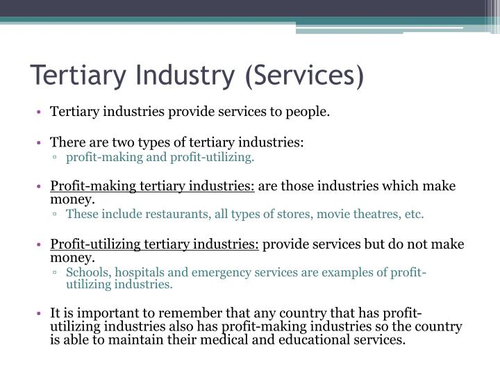 Tertiary Industry (Services)