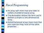 pascal programming8