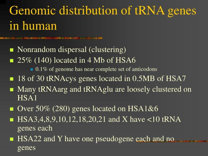 Genomic distribution of tRNA genes in human