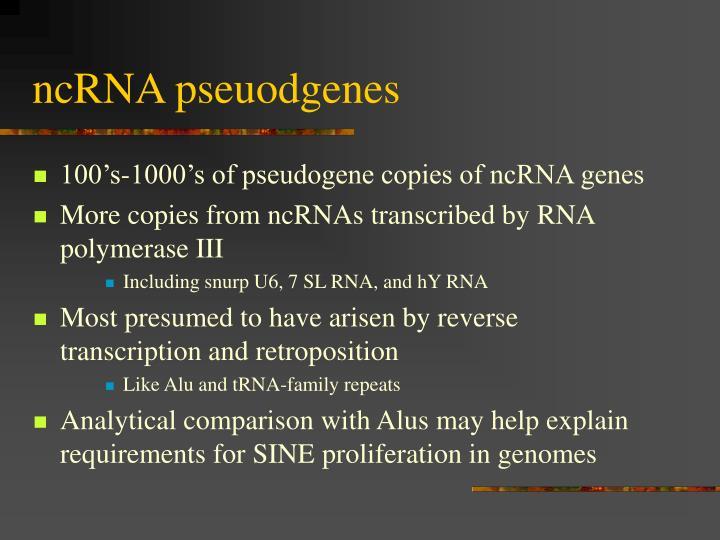 ncRNA pseuodgenes