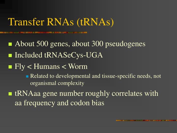 Transfer RNAs (tRNAs)