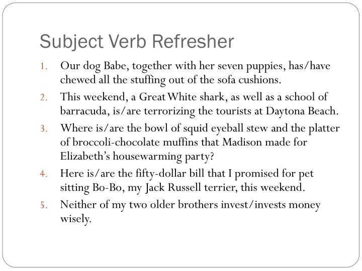 Subject Verb Refresher
