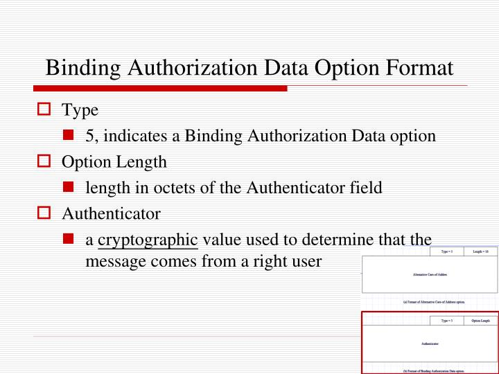 Binding Authorization Data Option Format