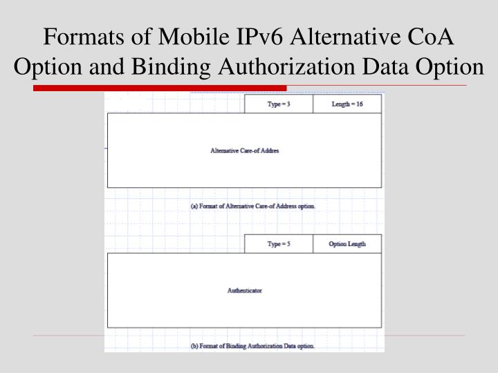 Formats of Mobile IPv6 Alternative CoA