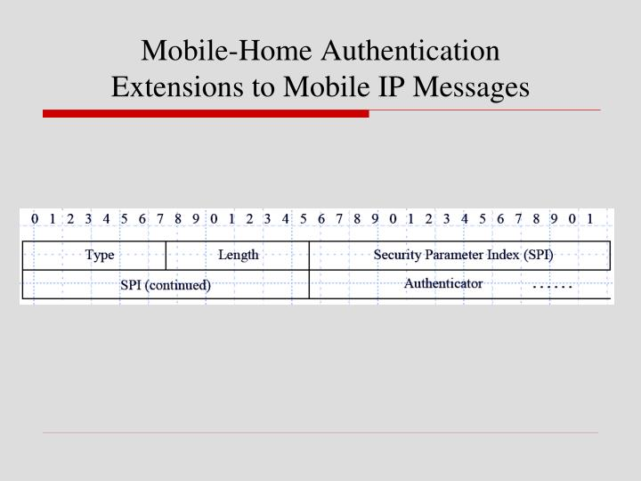 Mobile-Home Authentication