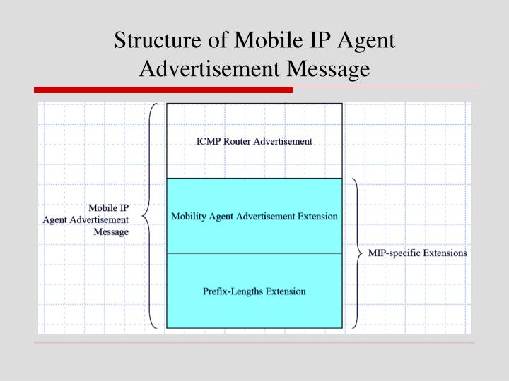 Structure of Mobile IP Agent