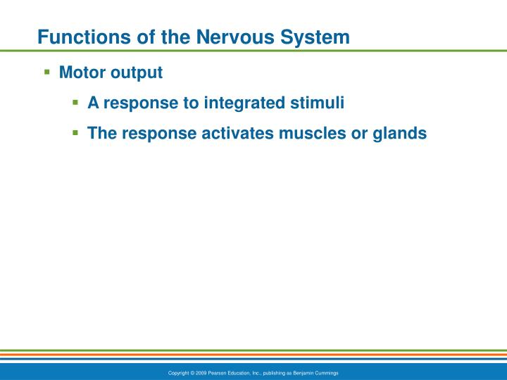 Functions of the nervous system1