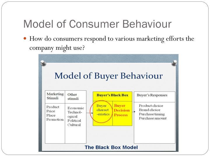 Model of Consumer
