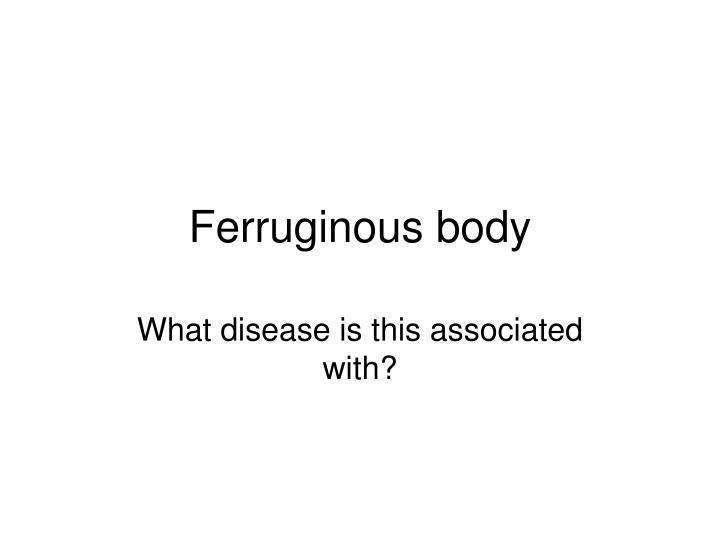 Ferruginous body