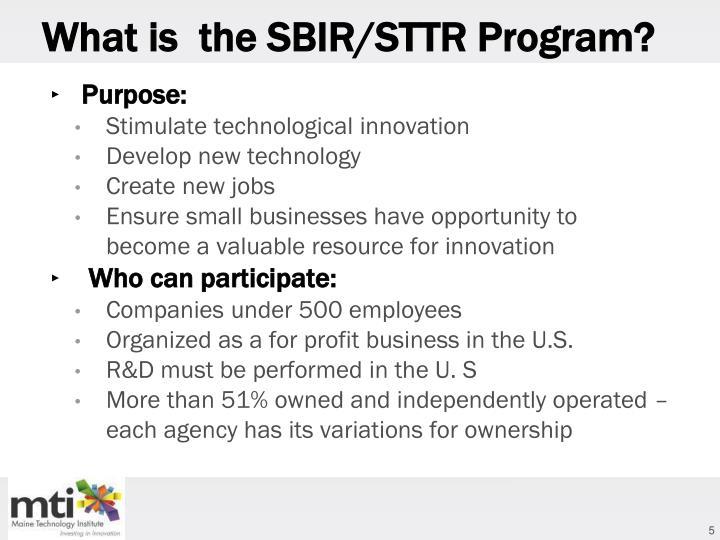 What is  the SBIR/STTR Program?