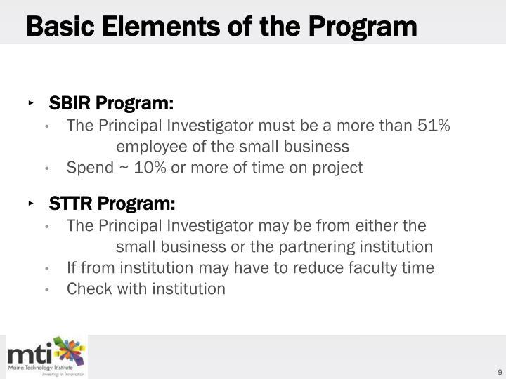 Basic Elements of the Program