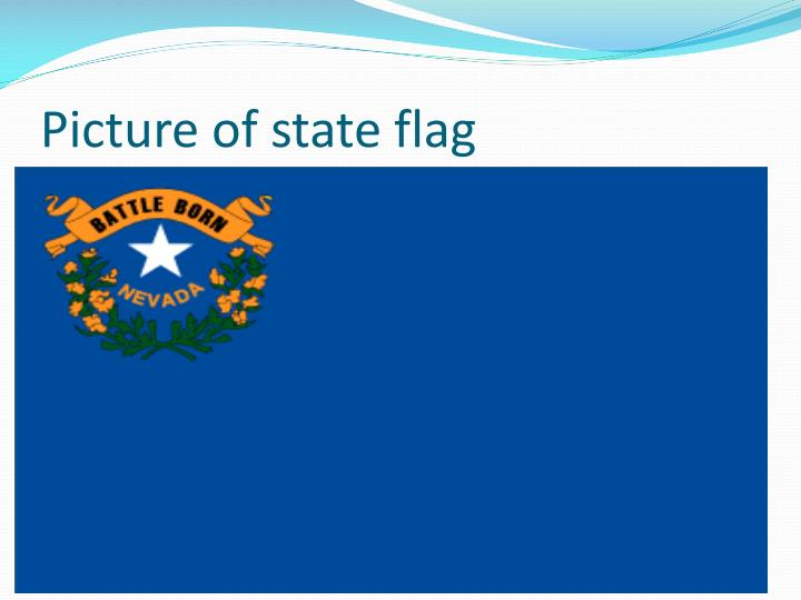 Picture of state flag