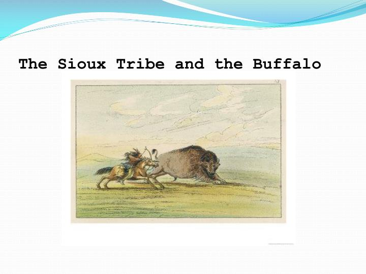 The Sioux Tribe and the Buffalo
