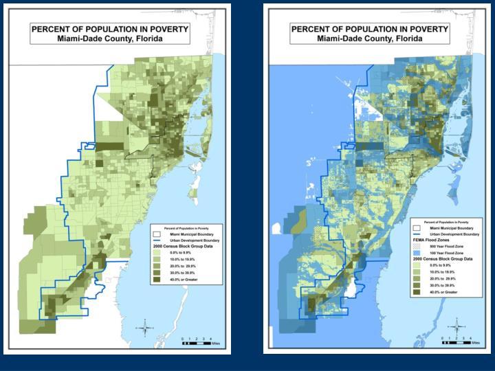 Local Demographic