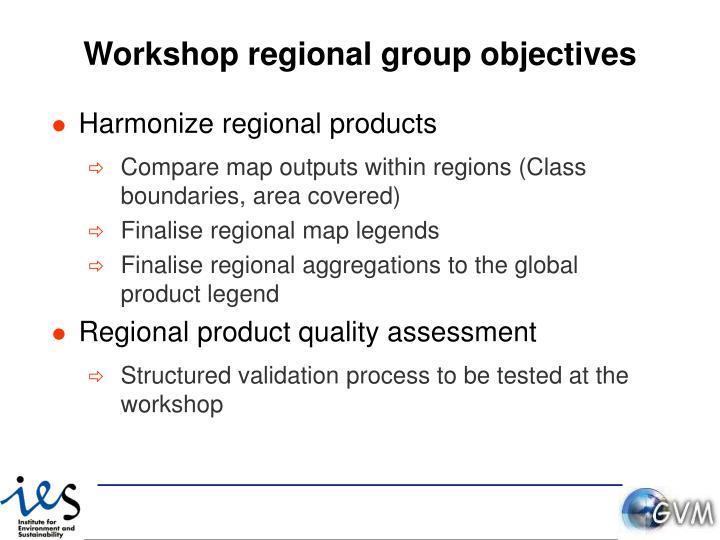 Workshop regional group objectives