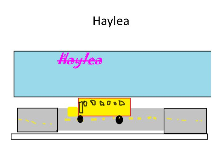 Haylea