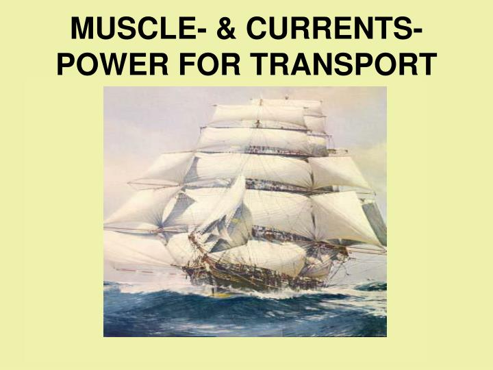 MUSCLE- & CURRENTS- POWER FOR TRANSPORT