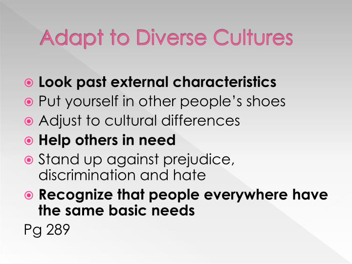Adapt to Diverse Cultures
