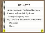 by laws1