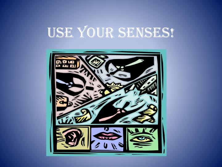 USE YOUR SENSES!