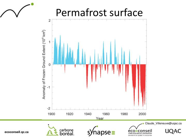 Permafrost surface