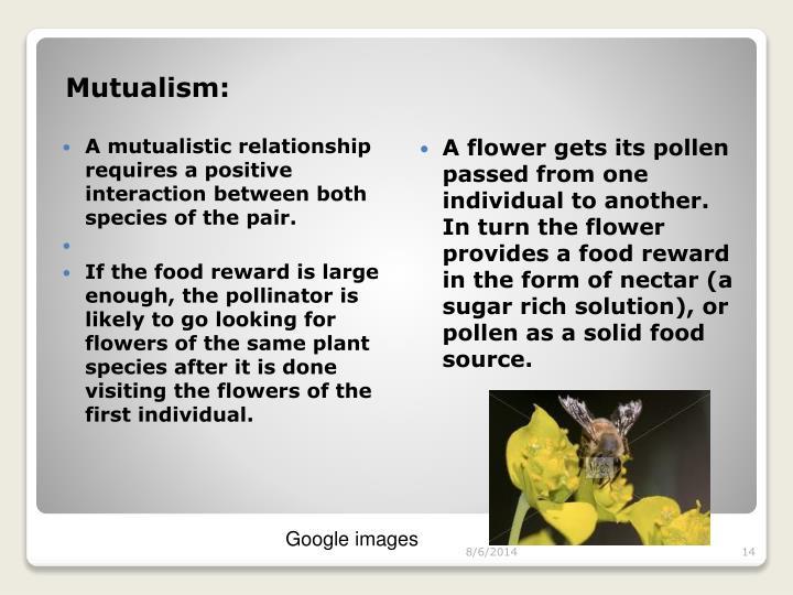 Mutualism: