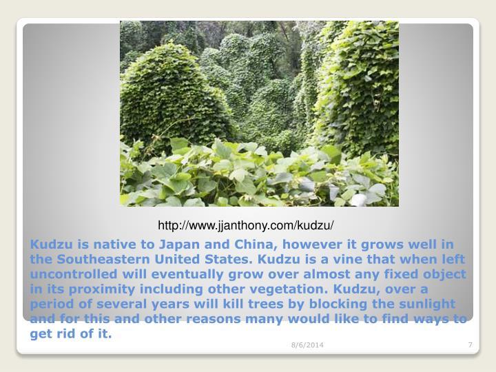 http://www.jjanthony.com/kudzu/