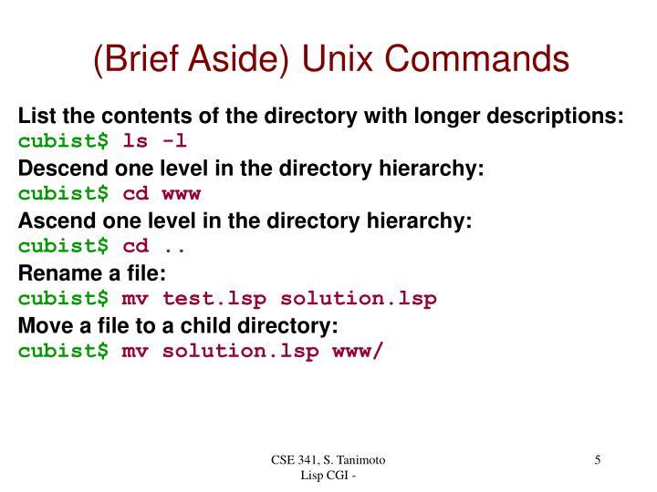 (Brief Aside) Unix Commands