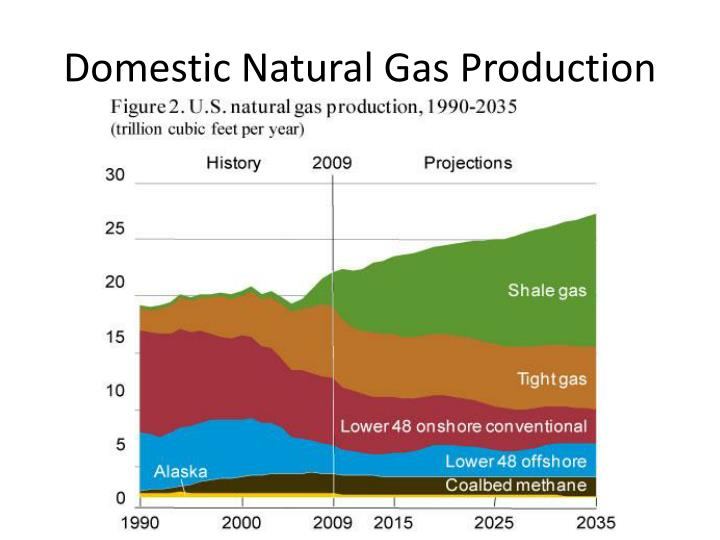 Domestic Natural Gas Production