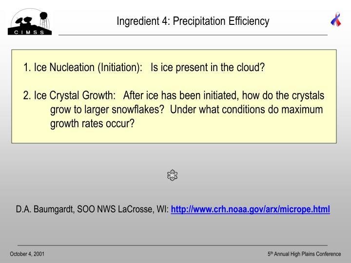 Ingredient 4: Precipitation Efficiency