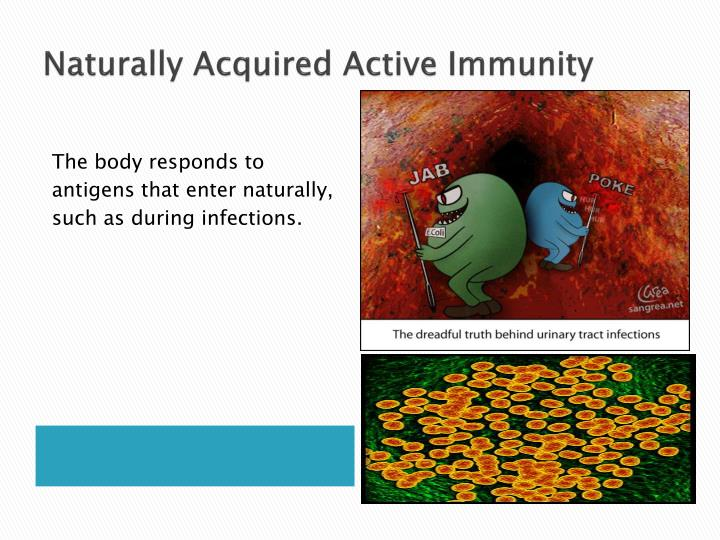 Naturally Acquired Active Immunity
