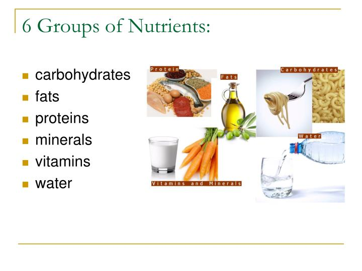 6 Groups of Nutrients: