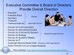 executive committee board of directors provide overall direction