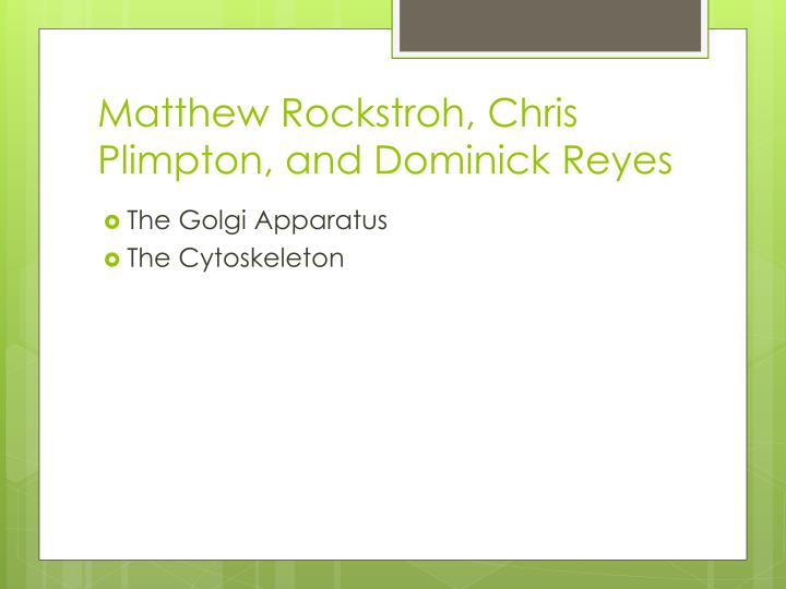 Matthew rockstroh chris plimpton and dominick reyes