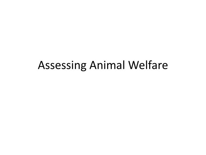 Assessing animal welfare