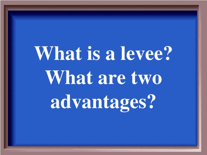 What is a levee?  What are two advantages?