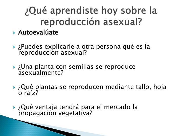 ¿Qué aprendiste hoy sobre la reproducción asexual?