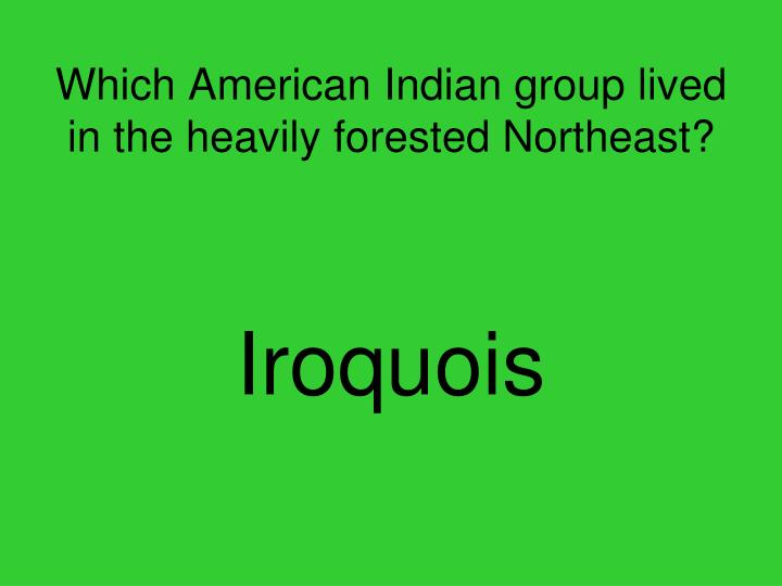Which American Indian group lived in the heavily forested Northeast?