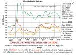 world food prices