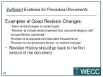 sufficient evidence for procedural documents2