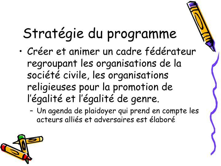 Stratégie du programme