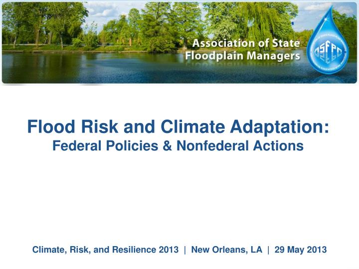 Flood Risk and Climate Adaptation: