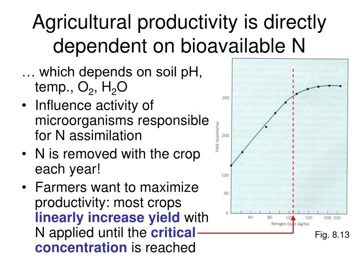 Agricultural productivity is directly dependent on bioavailable N