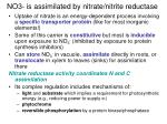 no3 is assimilated by nitrate nitrite reductase
